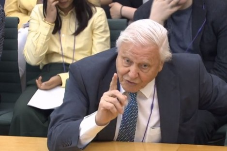 Naturalist Sir David Attenborough giving evidence to the House of Commons business, energy and industrial strategy committee today.