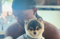'What the f***'s going on?' - Daniel Sturridge pleads with burglars to return his missing dog