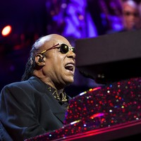 Some fans weren't at all happy about the sound at last night's Stevie Wonder gig