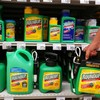 US judge slashes damages in Roundup weedkiller cancer case from €66 million to €17 million