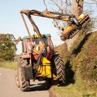 Government drops plans to trial roadside hedge-cutting in August