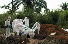 WHO says Congo Ebola outbreak 'health emergency' of international concern