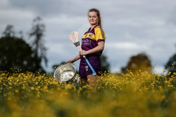 Success stories, life lessons, turbulent times and silver linings: Wexford's dual diamond