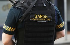 Gardaí seize guns and ammo at Limerick halting site in planned raid