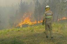 'Something strange is going on': 1,300 firefighters battle blazes in Portugal