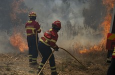 Winds revive Portugal wildfires as over 30 people injured by the flames
