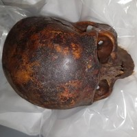 Man who stole mummified head from St Michan's Church jailed for 28 months