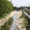 Temporary dam to be built after Grand Canal partially drains following collapsed sewer