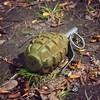 Civil War grenade found in Malahide and made safe