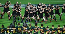 Last-gasp try earns Springboks dramatic draw against All Blacks in Wellington