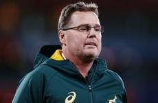 Rassie Erasmus satisfied after 'lucky' Springboks deny All Blacks in Wellington