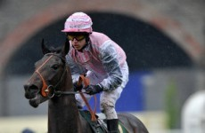 Pipped to the post: Disappointment for Rooney as his horse finishes last at Carlisle