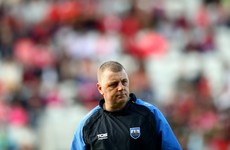 Waterford hurlers on the lookout for new manager