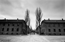 Euro 2012: Germany hit back at criticism of Auschwitz visit
