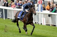 O'Brien confirms Arizona on course to challenge Siskin for Phoenix Stakes