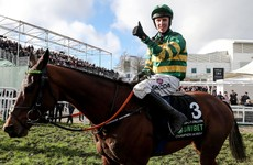 Cheltenham Champion Hurdle winner could be out for the season after suffering injury