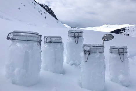 Scientists say they proved there is plastic in the snow of the Alps and the Arctic.