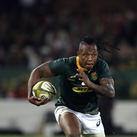 Nkosi's two tries helps South Africa trump Argentina as countdown to World Cup continues