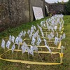 'Ghosts in their own country': Government accused of 'wall of silence' over Tuam babies
