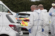 'Lot of young children were close': Gardaí make appeal over 'indiscriminate' Louth shooting