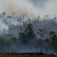 US ready to fight Amazon forest fires ... but only if it involves working with Brazilian government