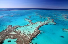 Australia downgrades long-term outlook for Great Barrier Reef to 'very poor'