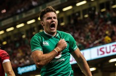 Stockdale at the double as Schmidt's Ireland cling on for victory in Cardiff