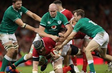 Devin Toner left out as Schmidt confirms Ireland's World Cup squad