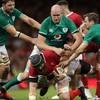 Devin Toner left out as Schmidt confirms Ireland's World Cup squad