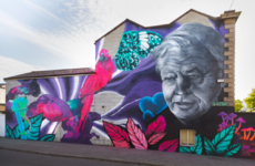 Council orders removal of second Subset mural in Dublin
