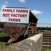 Chinese inspection of Roscommon meat plant didn't go ahead because of protest
