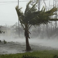 Hurricane Dorian claims the lives of at least seven people in the Bahamas