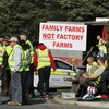Chinese delegation will visit Roscommon meat plant today following mediation with protesters