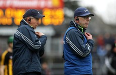 One half of Clare hurling's management team has stepped down