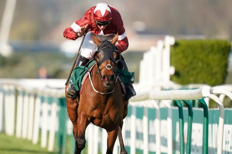 Tiger Roll at the 2019 Grand National.