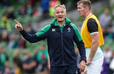 'It's a nice label to get,' says Schmidt as Ireland summit World Rugby rankings