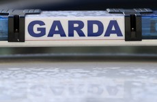 Man (44) arrested after gardaí seize guns in organised crime probe