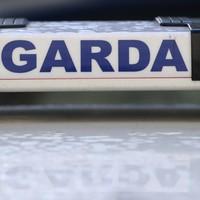 Man (44) arrested after gardaí seize guns in organised crime probe