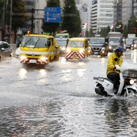 A tropical subject ... Could typhoons affect the upcoming Rugby World Cup?