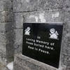 It should be possible to collect Tuam survivor DNA samples before legislation, report says