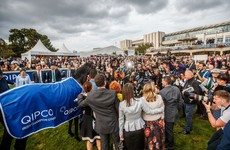 Donn McClean's big Irish Champion Stakes preview