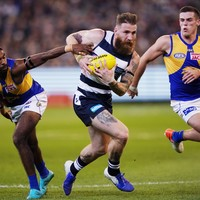 Tuohy and O'Connor help Geelong get back on track with win in 2019 AFL finals