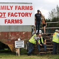 Agreement reached in beef row as talks conclude between farmers and meat factories