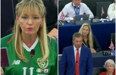 Nigel Farage says EU's tone is 'emollient' as Martina Anderson dons Irish jersey in EU parliament