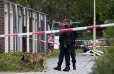 Dutch defence lawyer representing state witness in huge gangland case shot dead in broad daylight