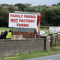 Farmers continue to protest at meat factories despite voting to stand down blockades
