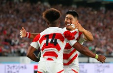 'I don't think anyone gives us a shot' - Japan turn attention to Schmidt's Ireland