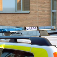 Burglars believed to have been armed with meat cleaver in raid on Limerick house