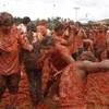 VIDEO: Colombia's annual tomato fight