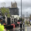 Man detained after dousing himself with suspected flammable liquid by Parliament gates in London